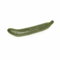Cucumber Seedlingcommerce © 2018 7990.jpg