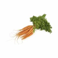 Dutch Carrots Seedlingcommerce © 2018 8031.jpg