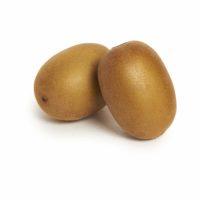 Golden Kiwi Seedlingcommerce © 2018 8103.jpg