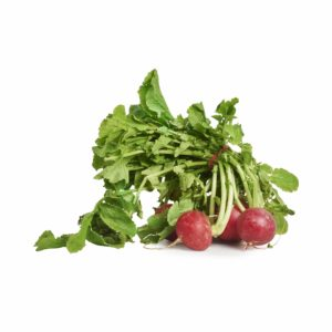 Radish 2018 © Seedling Commerce.jpg