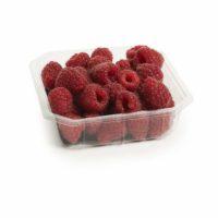 Raspberries Seedlingcommerce © 2018 8265.jpg