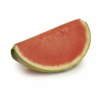 Watermelon Seedless Quarter Seedlingcommerce © 2018 8068.jpg